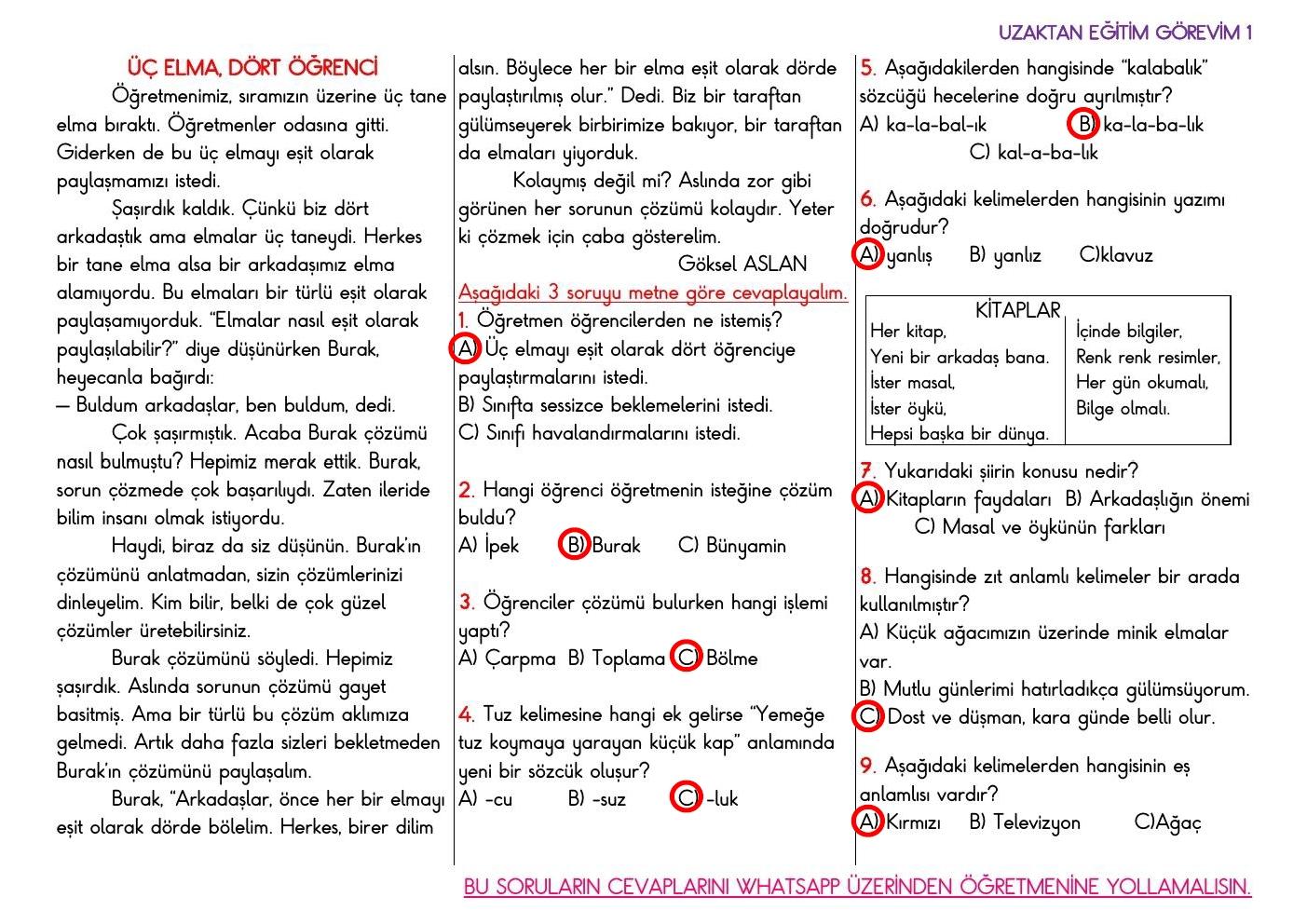 Uzaktan Eğitim Türkçe Görevi 1