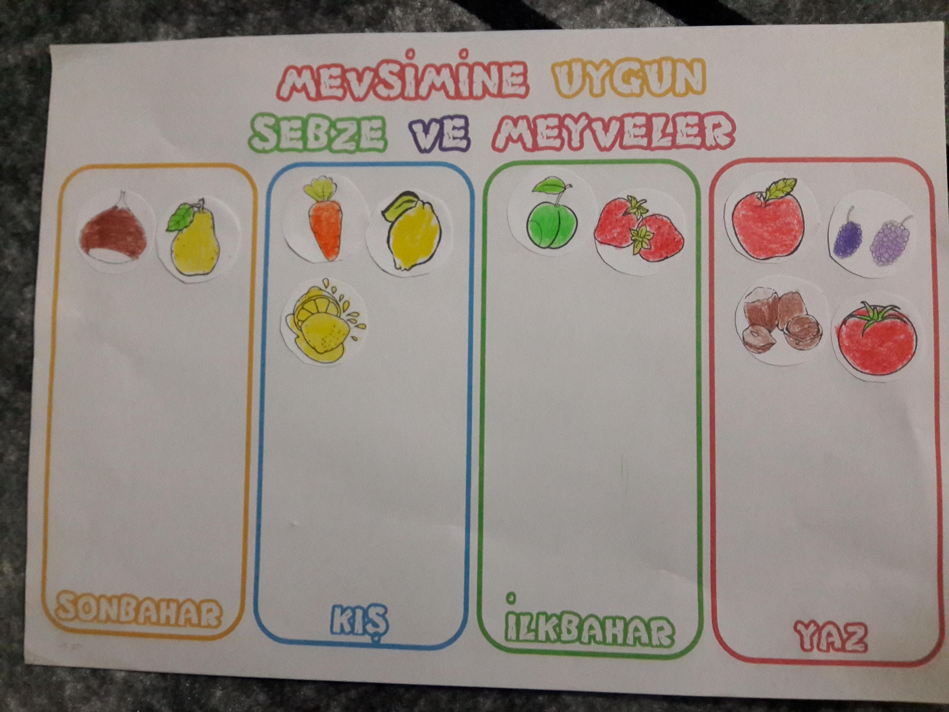 Mevsimine Göre Meyve ve Sebzeler (Kes-Yapıştır)