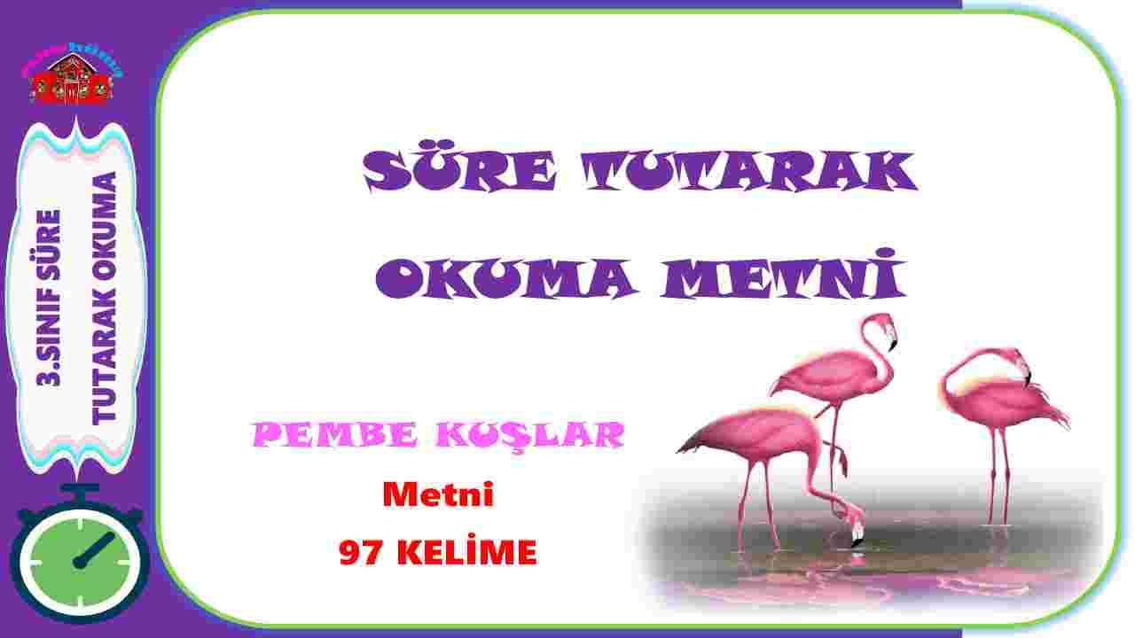 3.Sınıf Süre Tutarak Okuma Çalışması -3 I Pembe Kuşlar  Metni I 97  Ke