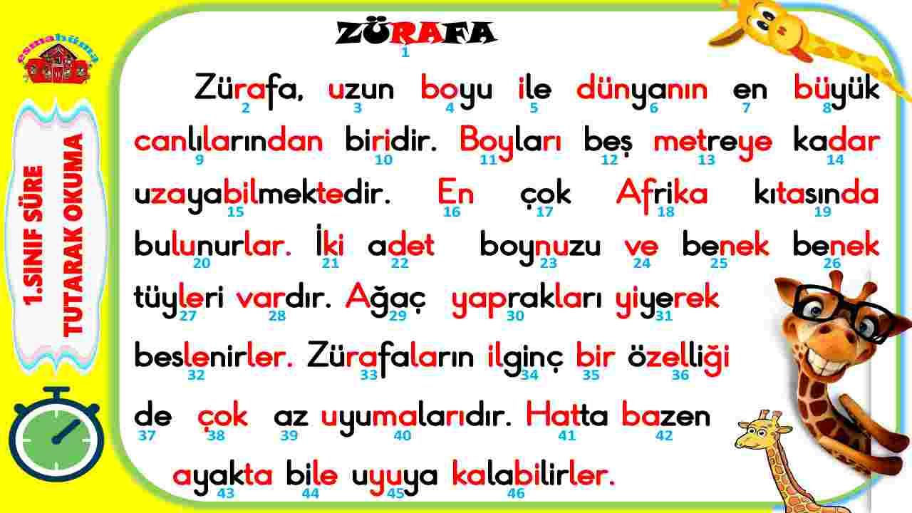 1.Sınıf Süre Tutarak Okuma Çalışması -17 I Zürafa Metni I 46  Kelime